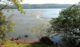 Alecrim - rio uruguai, Por oreste belmonte