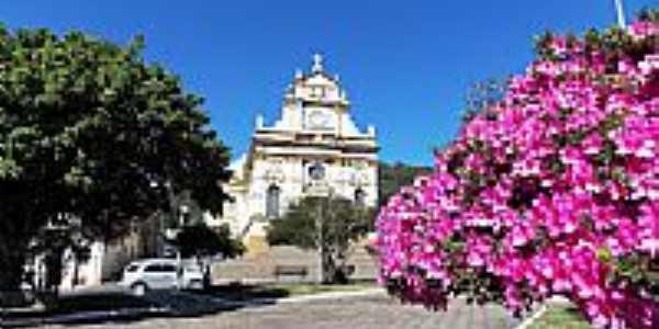 Antônio Prado-RS-Azaléia na Praça Garibaldi e Matriz do Sagrado Coração de Jesus-Foto:Sidnei Recco