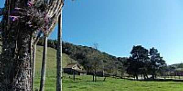 Antônio Prado-RS-Paisagem rural-Foto:Sidnei Recco