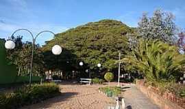 Arambaré - Arambaré-RS-Praça da Figueira da Paz-Foto:Henrique de BORBA