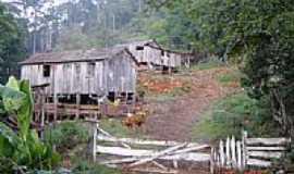 Aratiba - Propriedade rural no interior de Aratiba-RS-Foto:eltonstrada