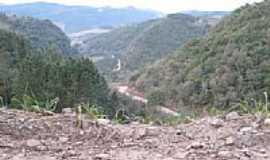 Arvorezinha - Serra-Foto:diogo didone