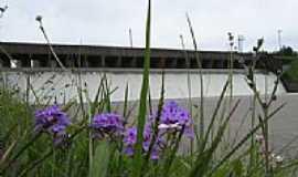 Camaqu� - Flores no gramado do Vertedouro da Barragem em Camaqu�-Foto:Henrique de BORBA