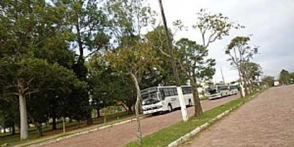 Cambobi - RS Foto Borin
