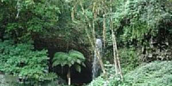 Gruta e Cachoeira em Campo Branco-Foto:gionatannicolini
