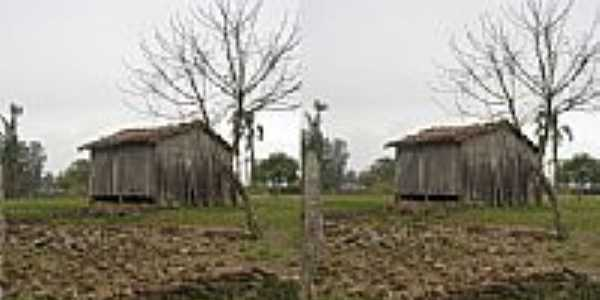 Campo Vicente-por Liceo Piovesan