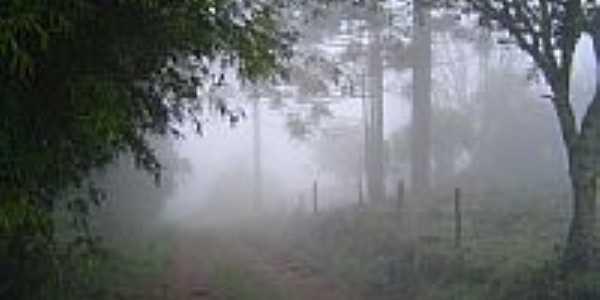 Neblina em estrada do Interior-Giovani João Sartori