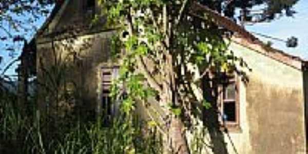 Casa Frederico Lhnhard-Foto:Jaime Rosalino