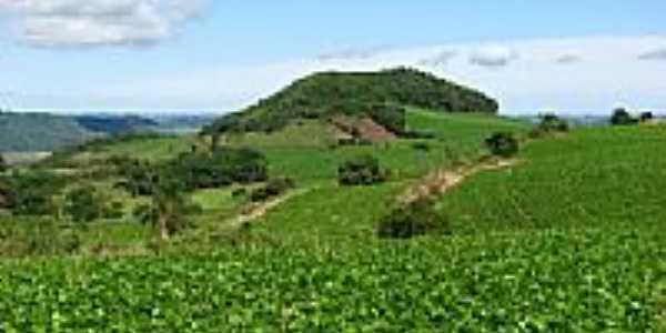 Paisagem rural-Foto: CMRech