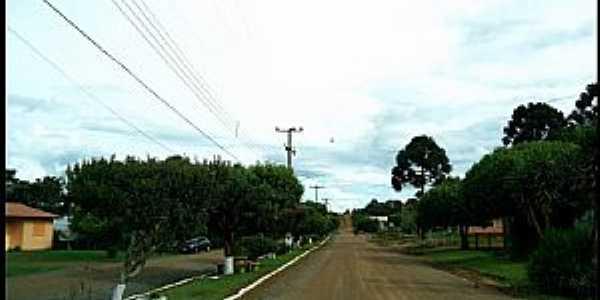 Clemente Argolo-RS-Avenida na entrada da cidade-Foto:Ney Garm
