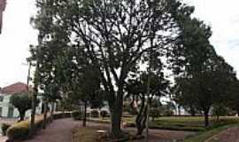 Cotiporã - Cotiporã-RS-Praça no centro da cidade-Foto:Adao Wons