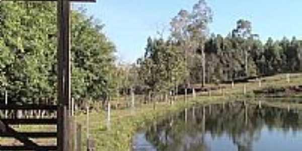 Lagoa-Foto:Airton Engster dos S…