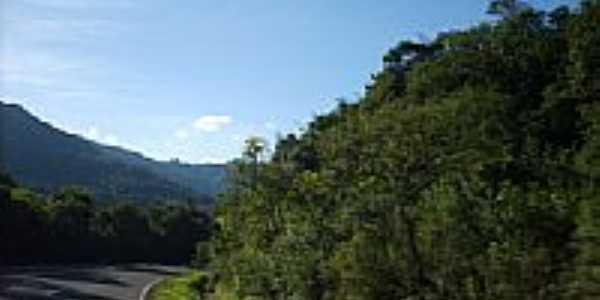 Rodovia na serra em Dois Irmãos-RS-Foto:Elisa Nascimento