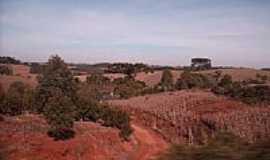 Erebango - Campos próximos de Erebango-Foto:THIAGO DAMBROS