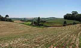 Erebango - Cultivo de soja em Erebango por CMRech