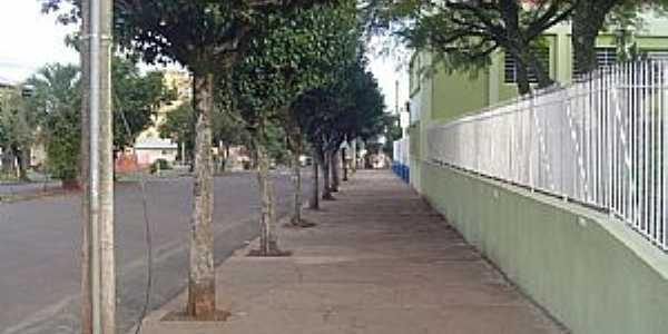 Erechim-RS-Rua Riachuelo-Foto:T�nia Mustefaga