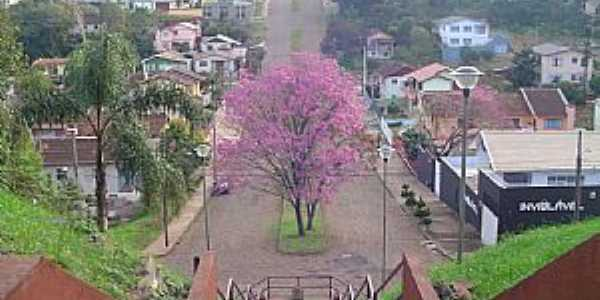 Erechim-RS-Vista da Avenida Principal-Foto:T�nia Mustefaga