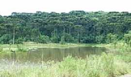 Erveiras - Lagoa-Foto:caioflavio