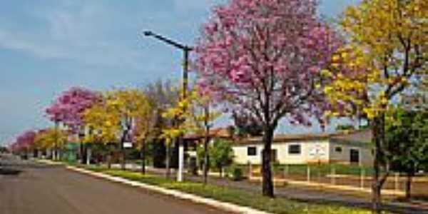 Ip�s na Av.Osvaldo J�lio Werlang- xandecorneli