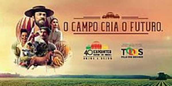 Expointer 2017 em Esteio - RS