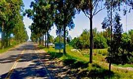 Estreito - Estreito-RS-Estrada próxima à cidade-Foto:Fotoficina