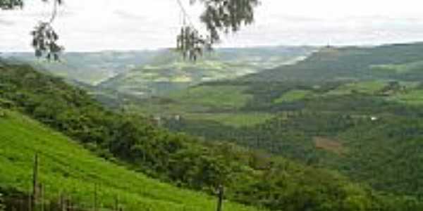 Morro dos Baianos-Foto:luiz antonio tesser