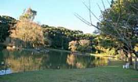 Farroupilha - Parque dos Pinheiros  Foto Éder Tondello