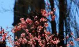 Flores da Cunha - TORRE DA IGREJA, FLORES DA CUNHA-RS, , Por ANELISE  KUNRATH