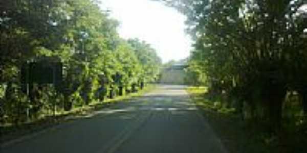 Estrada em Formosa-RS-Foto:Rattoxodo