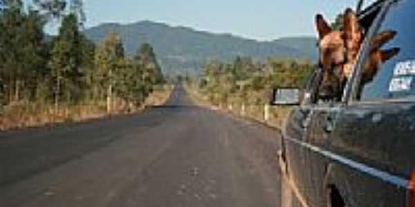 Rodovia BR 471 em Formosa-Foto:caioflavio