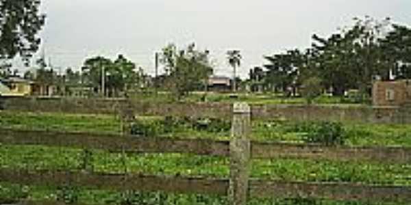 Imagem Rural-Foto:Flavio Fernandes