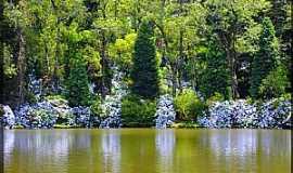 Gramado - Gramado-RS-Reflexo das hort�nsias no Lago Negro-Foto:Sunriser