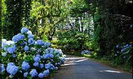 Gramado - Gramado-RS-Trilha de caminhada-Foto:Sunriser