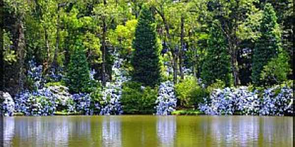 Gramado-RS-Reflexo das hortênsias no Lago Negro-Foto:Sunriser