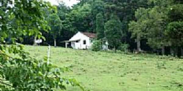 Serra Gaúcha-Foto:caioflavio
