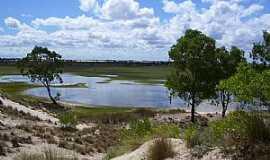 Ilha dos Marinheiros - Ilha dos Marinheiros-RS-Laguna dos Patos-Foto:Roque Oliveira