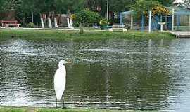 """Imb� - Imb�-RS-Gar�a no lago""""Bra�o Morto""""-Foto:Susy Dienstbach"""