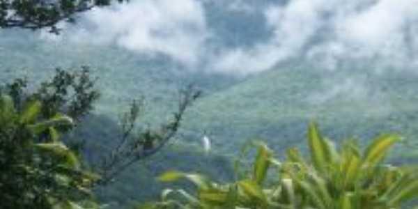 cascata vista do centro, Por Suzana S. Bobsin