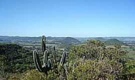 Jaguari - Vegetação