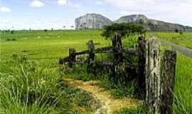 Lajedão - Área rural de Lajedão-BA-Foto:Alberto Alves
