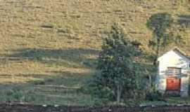 Juá - Fazenda dos Índios - Juá - Distrito de São Francisco de Paula - RS  por Felipe Castilhos