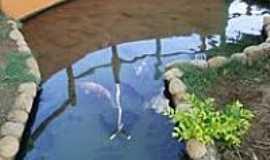 Lapão - Peixes na Praça de Lapão-BA-Foto:Ateloucos