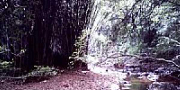Rio Lajeado-por rafaspada