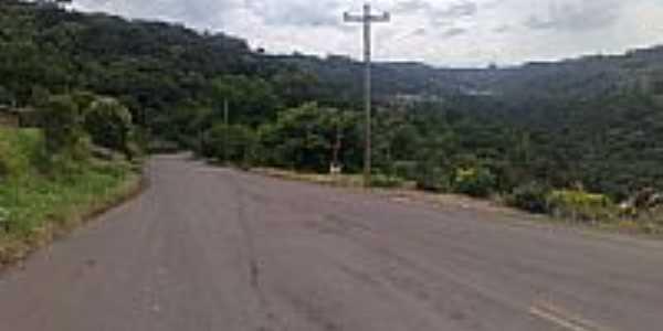 Estrada Nova Bréscia-Foto:TiagoZFotos