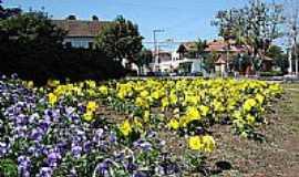 Nova Petrópolis - Nova Petrópolis-RS-Jardim florido-Foto:Romão