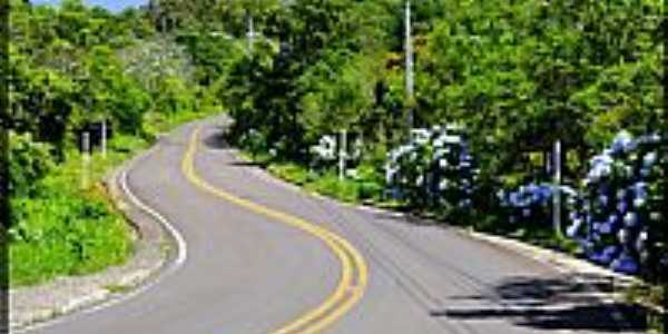 Osório-RS-Subindo a Serra-Foto:Sunriser