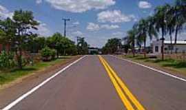Palmitinho - Palmitinho-RS-Rodovia RS-472 na cidade-Foto:Fredy Silva