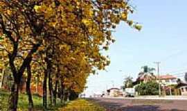 Panambi - Panambi a Cidade do Ipê Amarelo