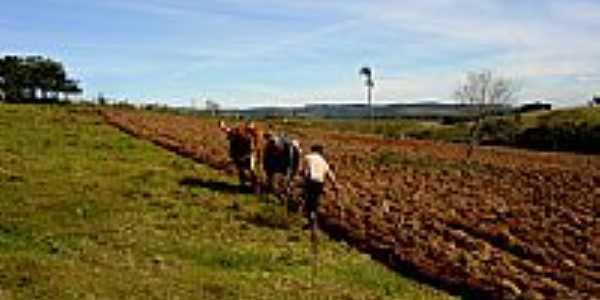 Vista Rural-Liceo Piovesan