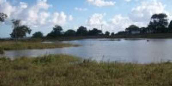 Lago do Tanque da Embasa, Por ROBERTO RODRIGUES